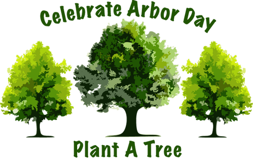 Plant a Tree for Arbor Day   Enchanted Mountains of Cattaraugus County, New  York ... Naturally yours