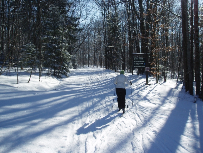Cross Country Skiing on the Art Roscoe Trails at Allegany State Park