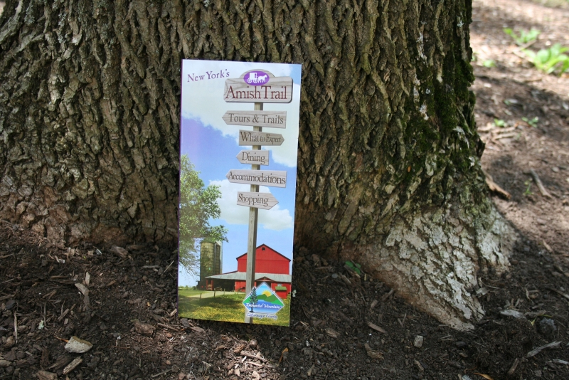 Picture of 2012 New Amish Trail Brochure and Map leaning on a tree's trunk