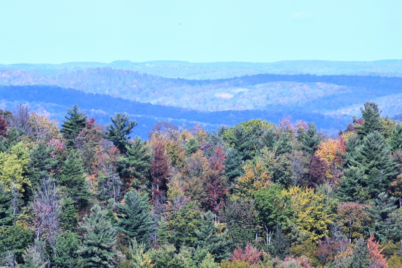 Overlook on Route 16, Olean