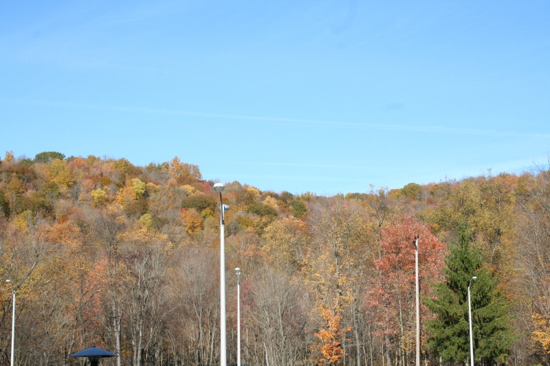 View behind the Cattaraugus County center building in Little Valley, NY