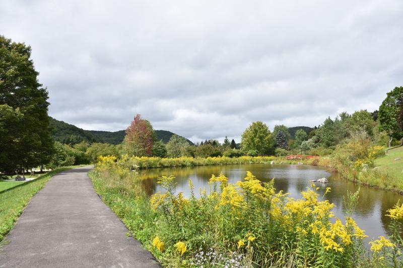 Nannen Arboretum in Autumn