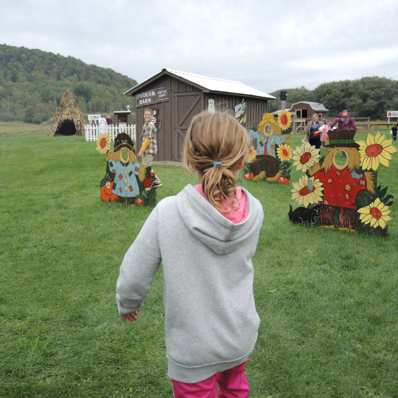 Picture from Pumpkinville on September 15, 2013