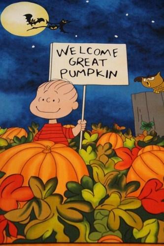 Welcome Halloween!