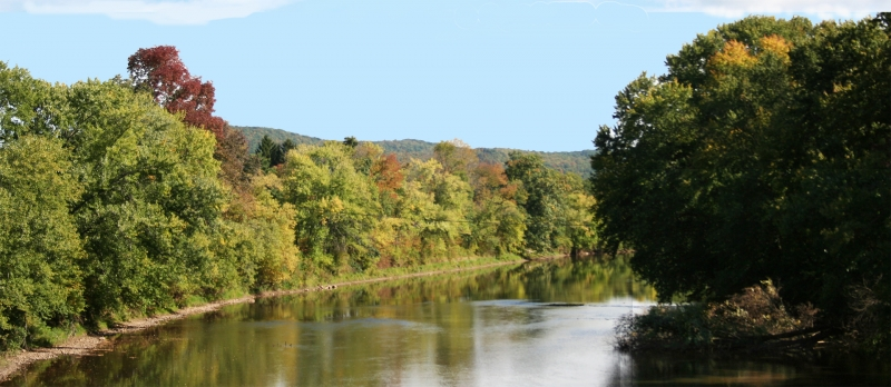 Fall in Cattaraugus County