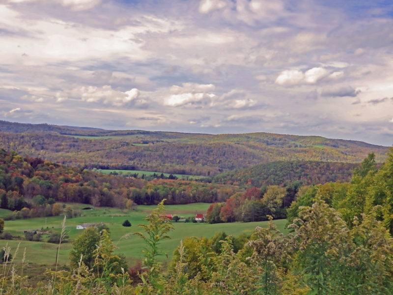 Fall Foliage in Cattaraugus County 2018