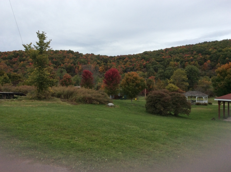 Fall foliage in Little Valley on October 11