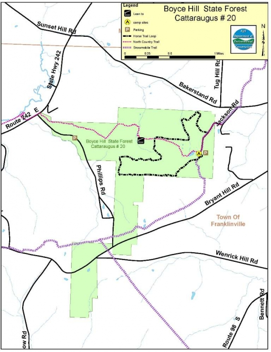 Boyce Hill State Forest