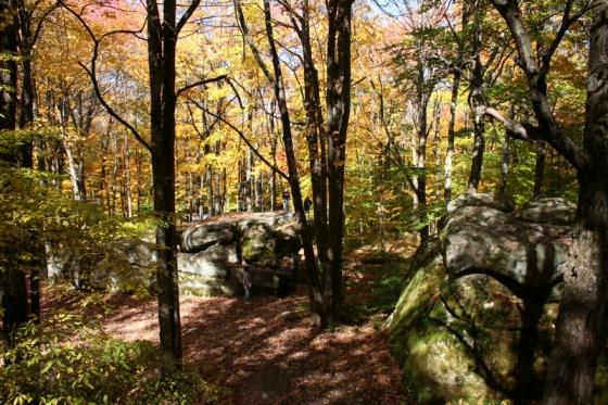 Thunder Rocks at Allegany State Park