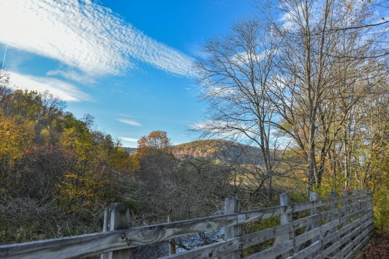 Autumn View from the Pat McGee Trail