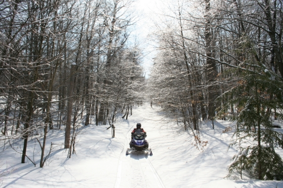 Snowmobile on a trail at Allegany State Park