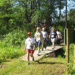 Woods Walk at Pfeiffer Nature Center
