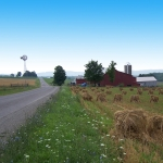 Along the Amish Trail