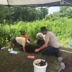 Archaeological Dig at Canticle Farm Presentation