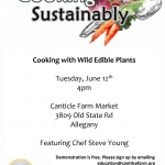 Cooking with Wild Edible Plants at Canticle Farm