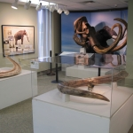 Farewell to the Randolph Mammoth at the Catt Co Museum