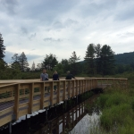 Take a hike at Allegany State Park Wetland Boardwalk