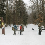 XC Skiing at Allegany State Park