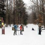 XC Ski Tours at Allegany State Park