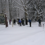 Cross Country Ski Tours at Allegany State Park