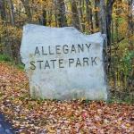 Allegany Sate Park sign