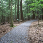 Pfeiffer Lillibridge Accessible Trail