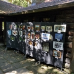 Photo Contest at Pfeiffer Nature Center