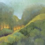 Wanda Dean's Forest in Strong Light