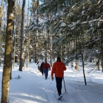 Winter Snowshoe Hikes