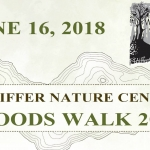 Woods Walk Pfeiffer Nature Center 2018