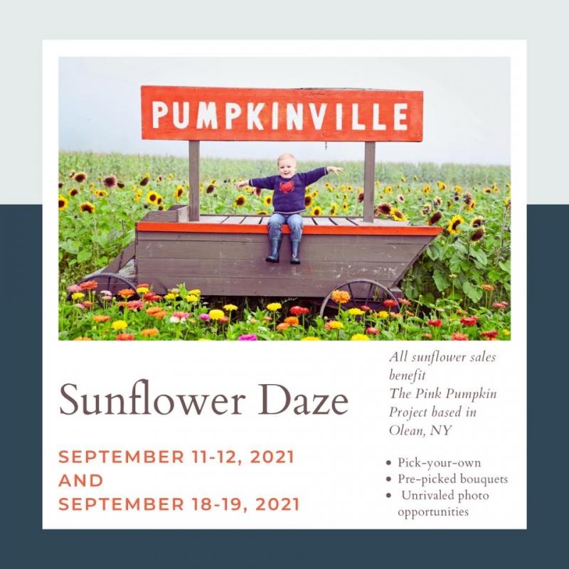 Sunflower Daze Poster at Pumpkinville