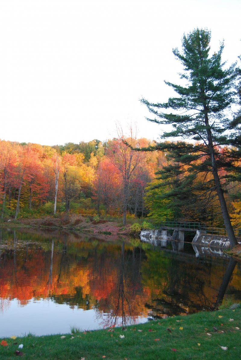3rd Saturday Hikes at Allegany State Park Photo by Jim Toner
