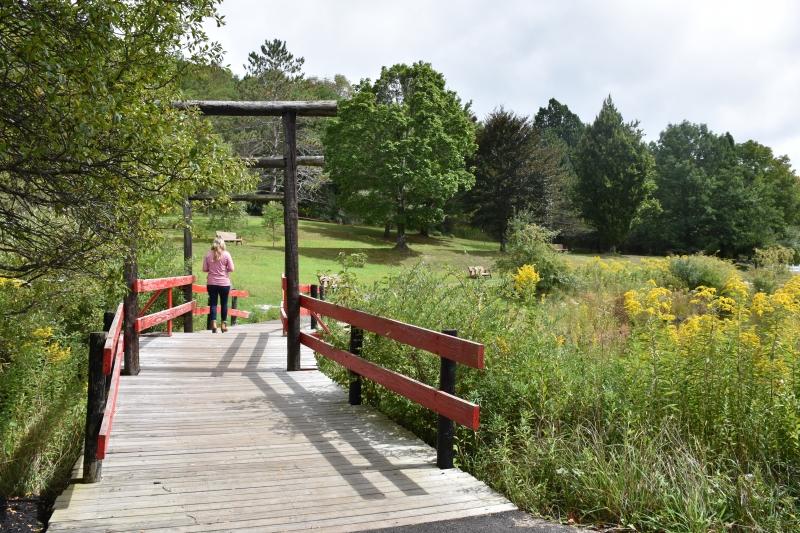Strolling through the Nannen Arboretum