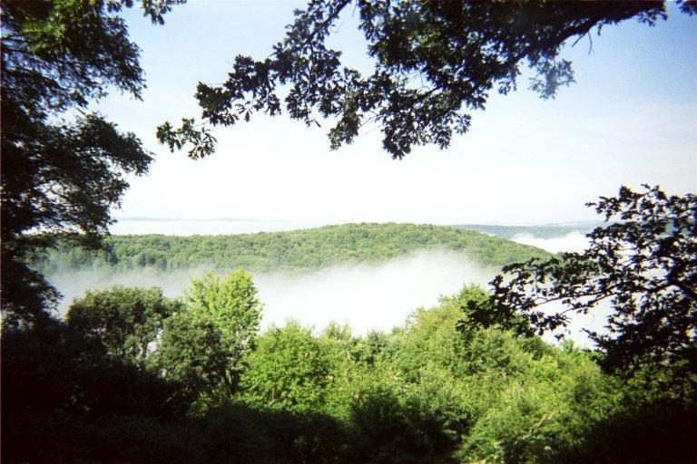 Foggy Cabin Vista at Pfeiffer Nature Center