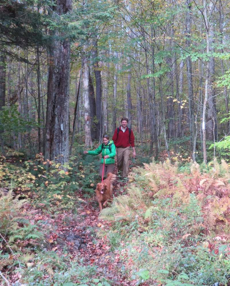 Hiking the North Country Trail in Allegany State Park