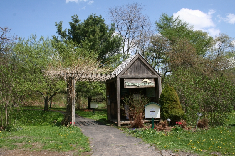 Nannen Arboretum Clean Up 2019