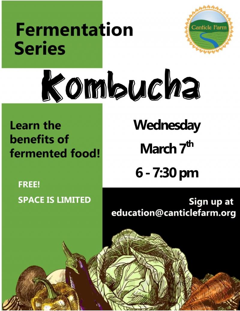 How to make kombucha with Canticle Farm