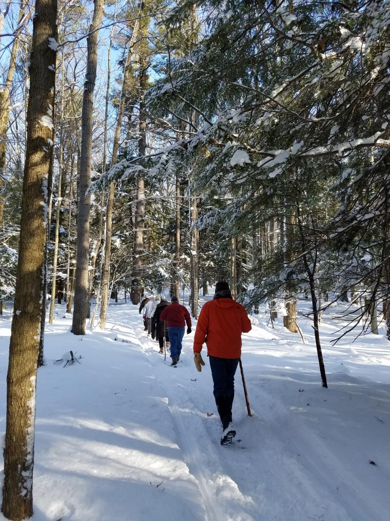 Winter Snowshoe Hikes