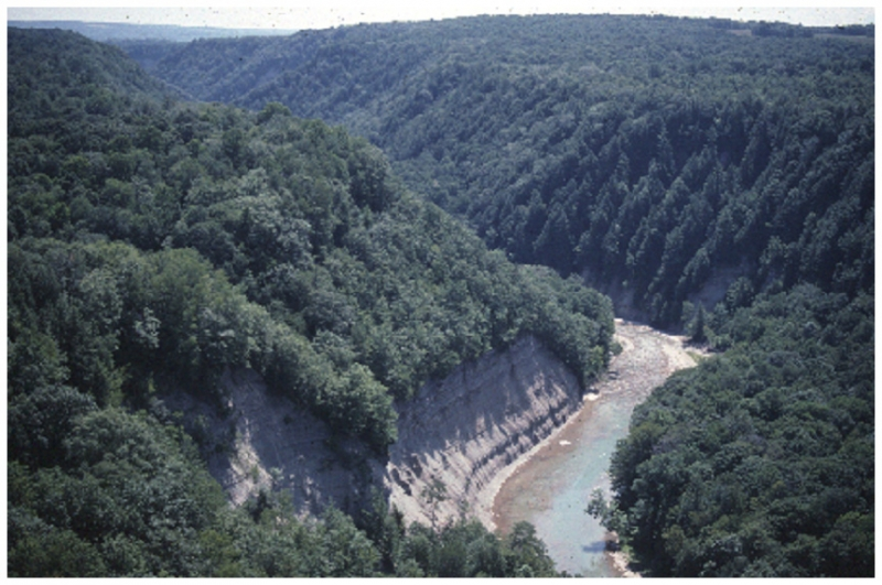 A view of one section of Zoar Valley