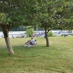 People relaxing under a tree during the 2019 OnoFest