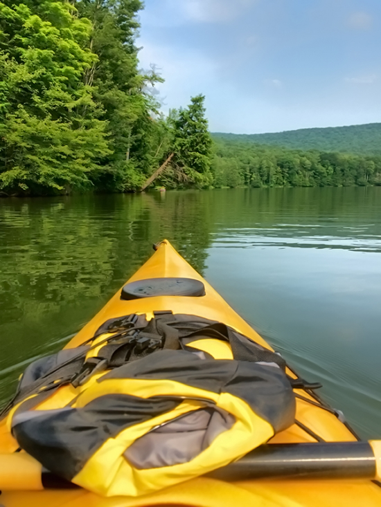 The view while kayaking on Quaker Lake at Allegany State Park in the summer of 2015 by Greg Spako.