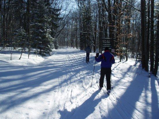 Art Roscoe Trails