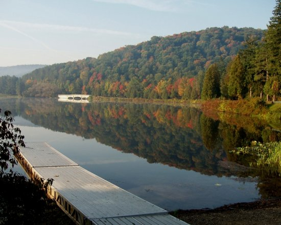 Fall in Allegany State Park