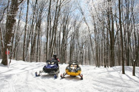 Two snowmobiles in a turn