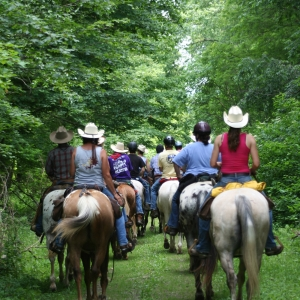 riding the Pat McGee trail