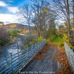 Pat McGee Trail: South of Little Valley and North of Salamanca, NY