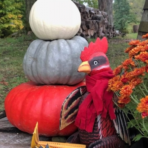 Pumpkins and Rooster at Rusty Rooster