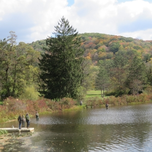 Adventure Series Allegany State Park - Fly Fishing