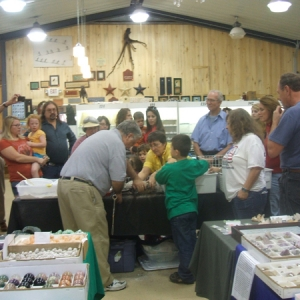 2010 Gem, Mineral and Fossil Show