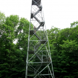 Allegany State Park Fire Tower Tours
